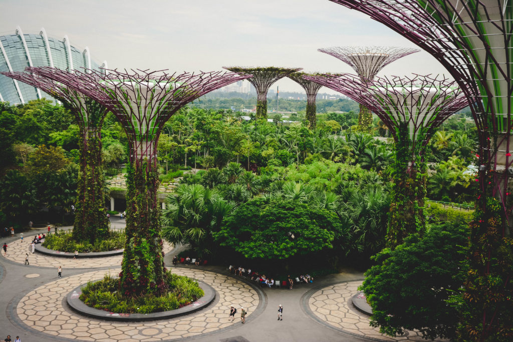 Solarne drzewa Singapur